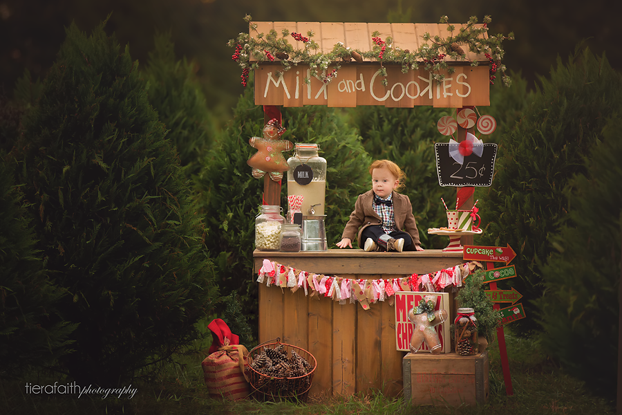 Country Cove Christmas Mini Sessions Nashville Child Photographer Christmas Tree Farm Pictures Christmas Mini Shoot Christmas Minis