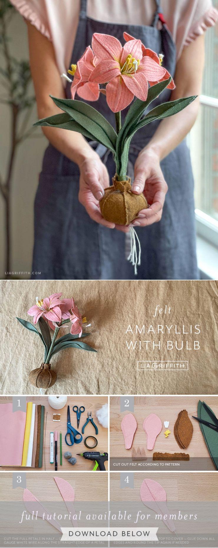 Felt Amaryllis Bulb DIY Template & Tutorial - Lia