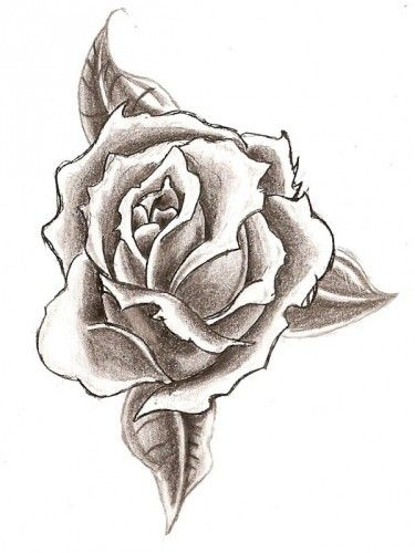 Easy pencil drawings of flowers pencil drawings of flowers art