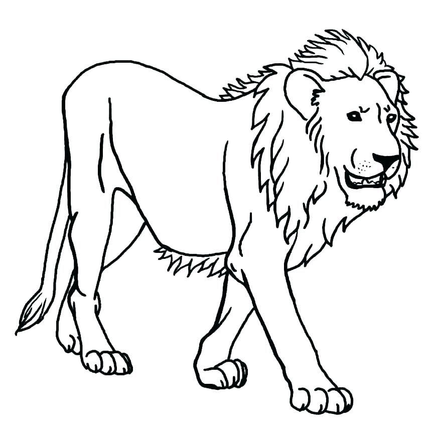 The Best Lion Coloring Pages Ideas For Kids Free Coloring Sheets Menggambar Singa Gambar Kuda Gambar