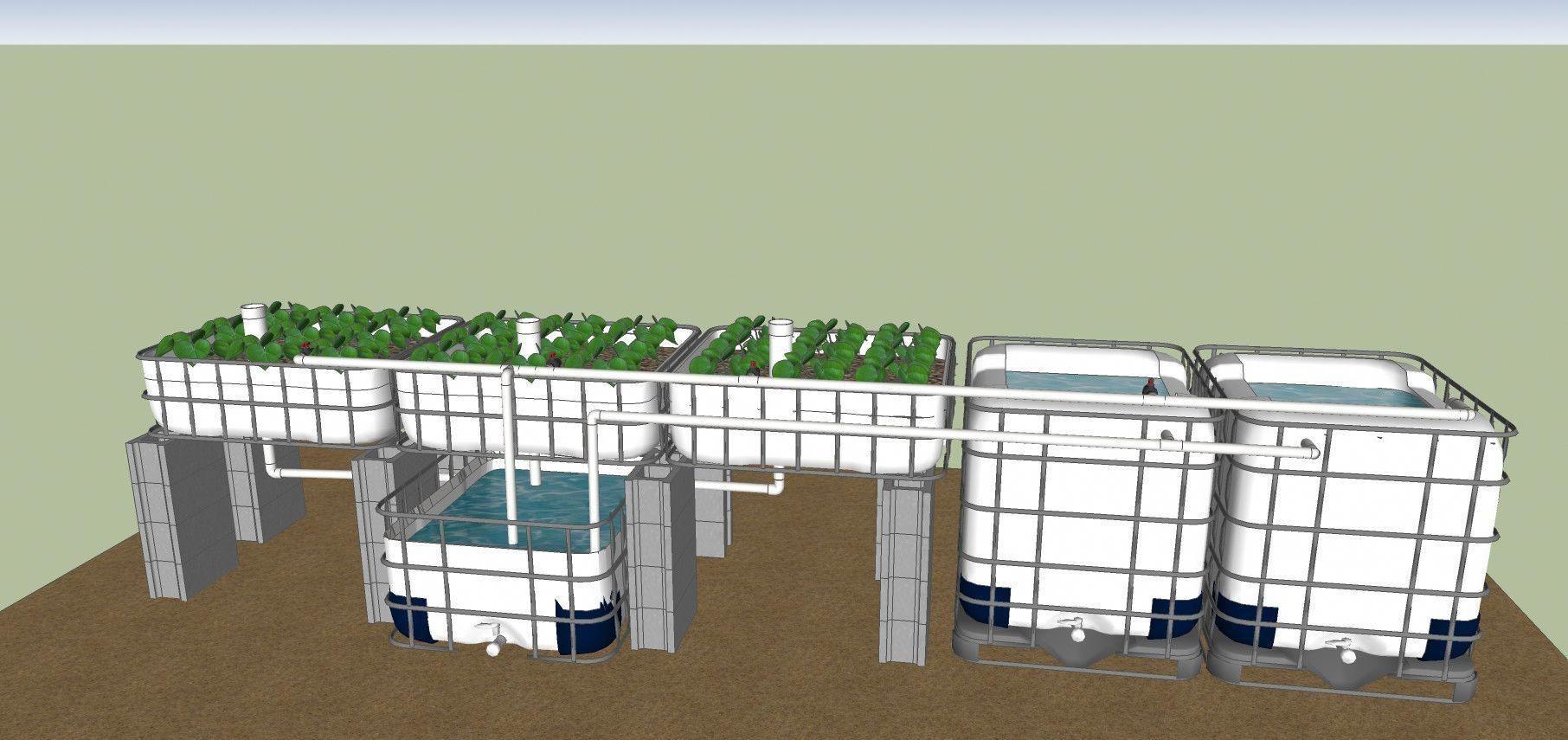 aquaponics Tips to Manage a Great DIY Aquaponics Farm