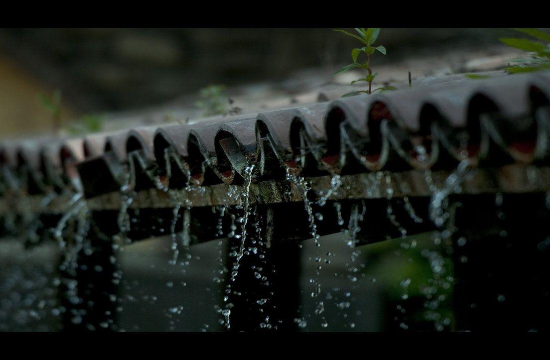imagens lindas de chuva caindo - Pesquisa Google | IMAGENS ...