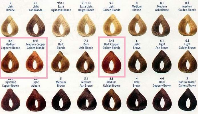 Chi Hair Color Charts Keninamas