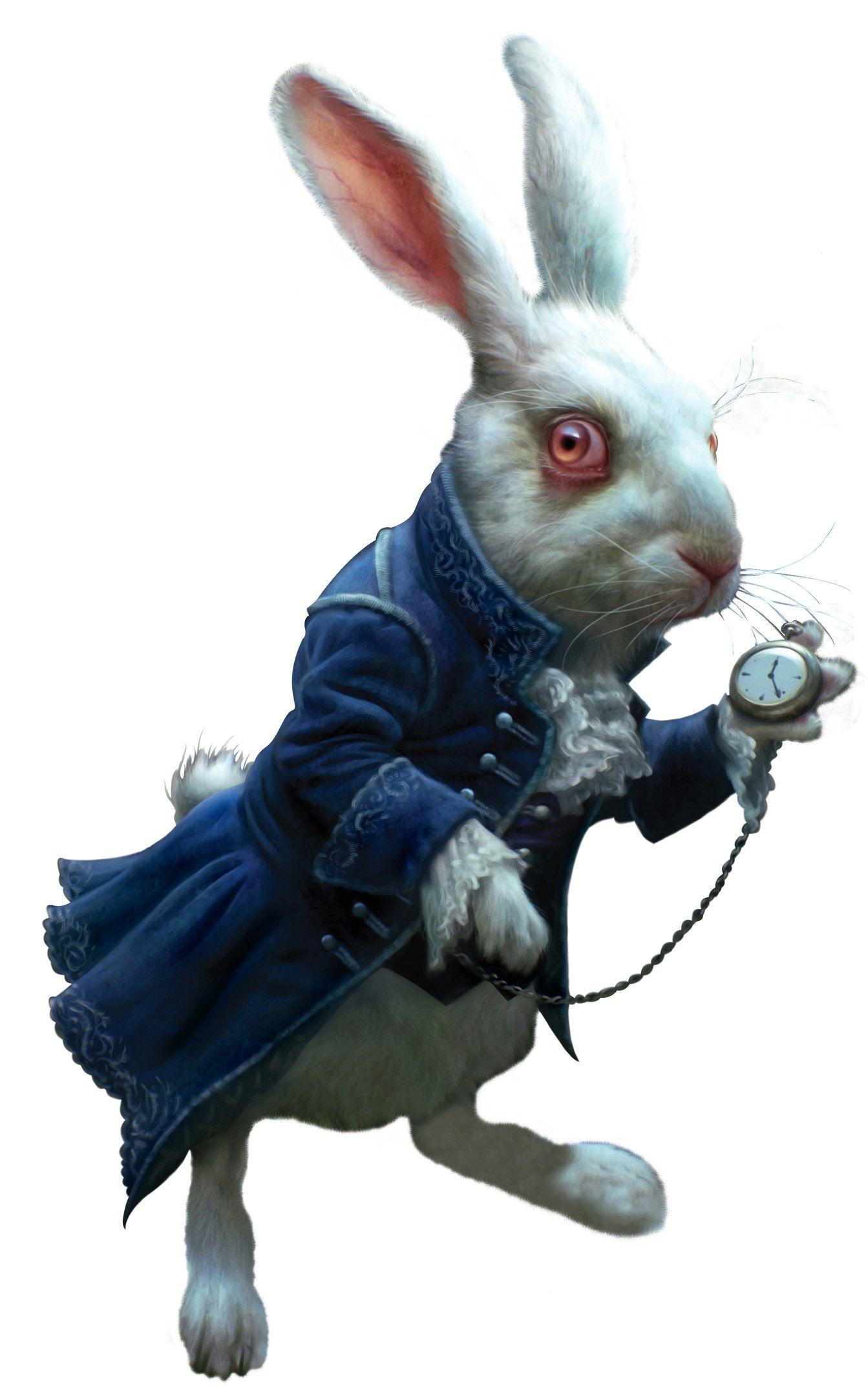 Кролик ебет алису