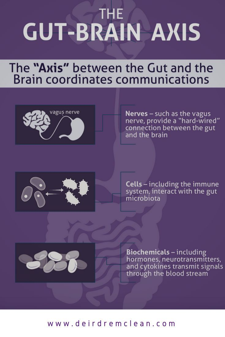 Targeting Mental Wellness Through The Brain-Gut Axis - Did you know that we have two brains? One in