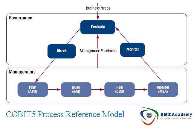 cobit 5 process assessment model pdf