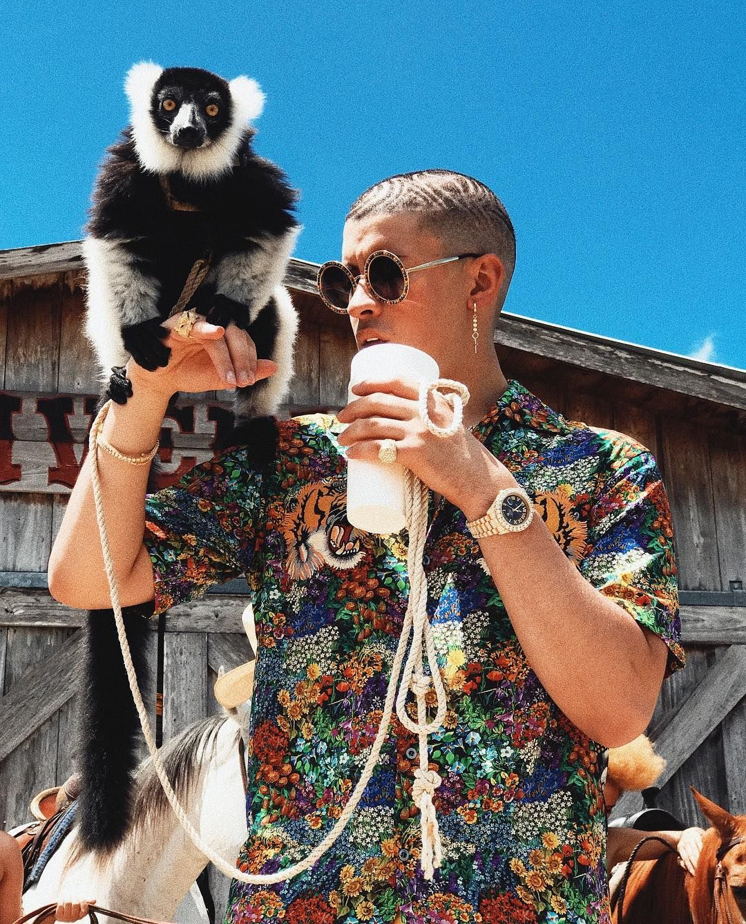 BAD BUNNY Bad Bunny Pinterest Bunny, Wallpaper and