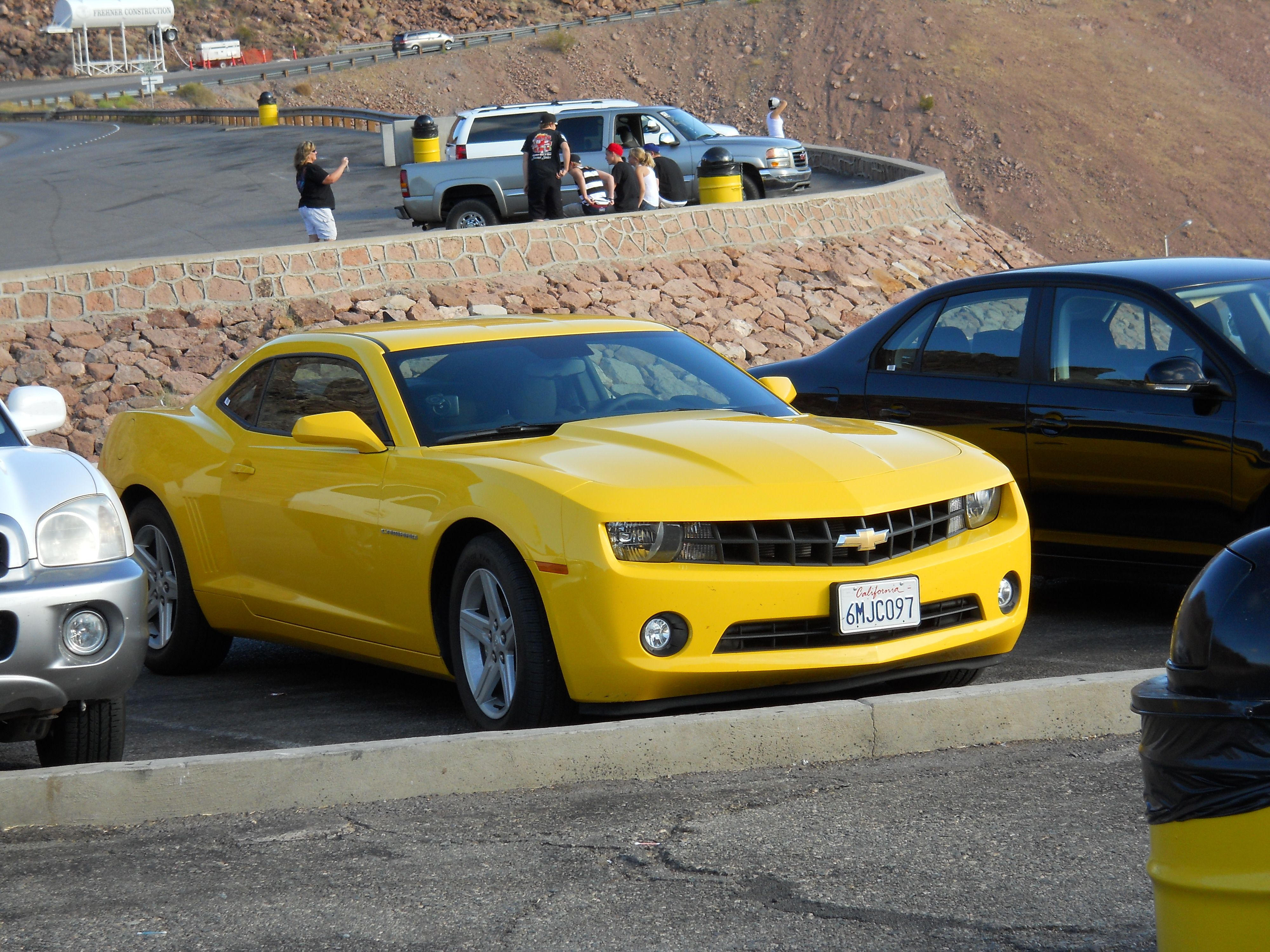 Bumblebee found near the hoover dam