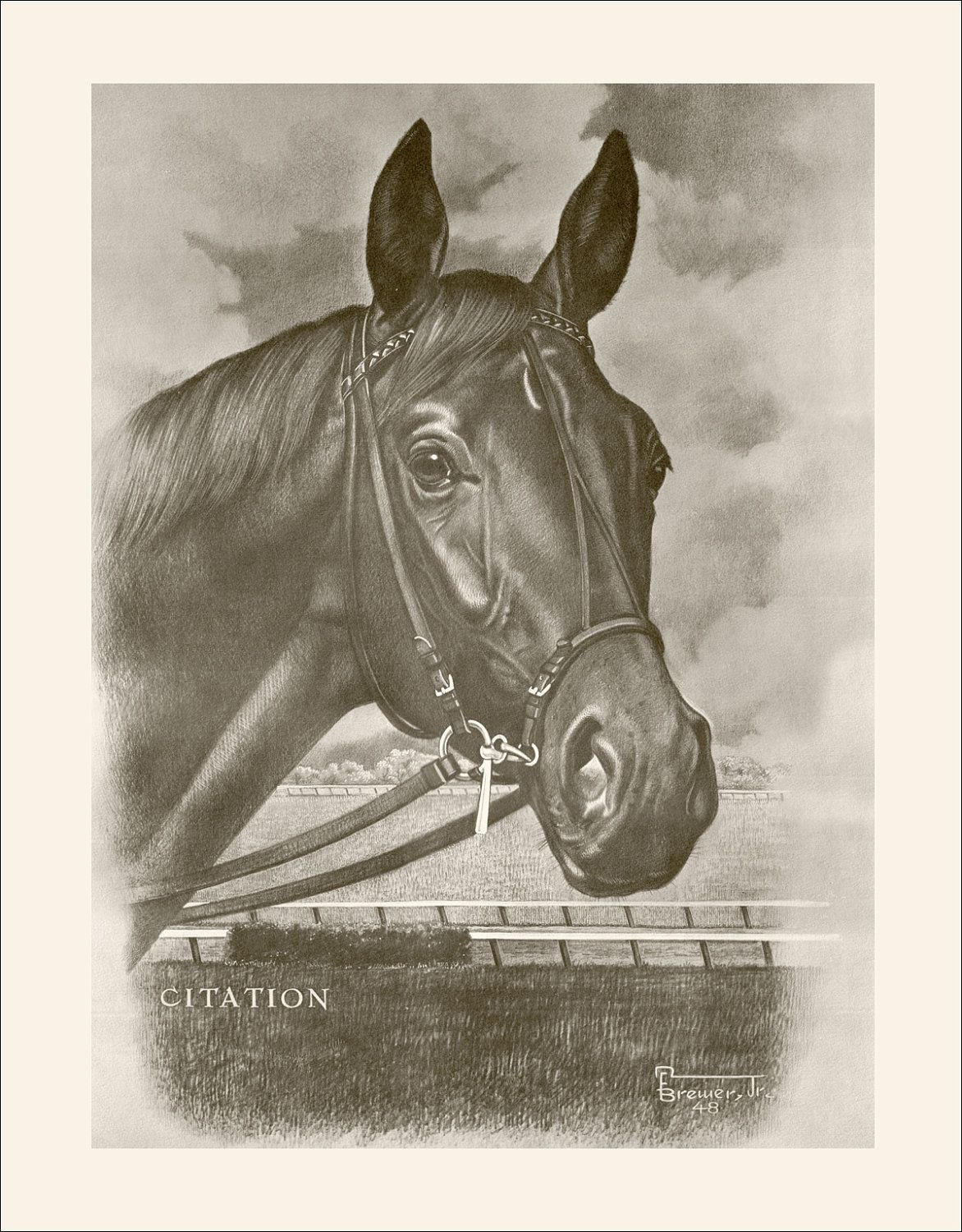 Triple Crown Winner Citation By Allen F Brewer Jr Thoroughbred Horse Horses Triple Crown Winners