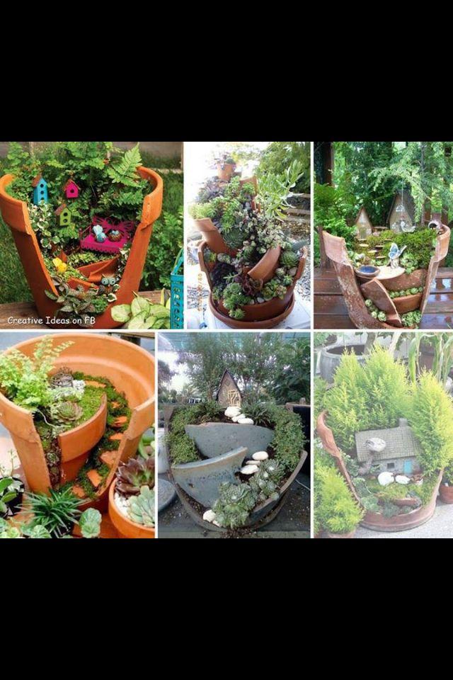 Miniature garden in a broken pot.
