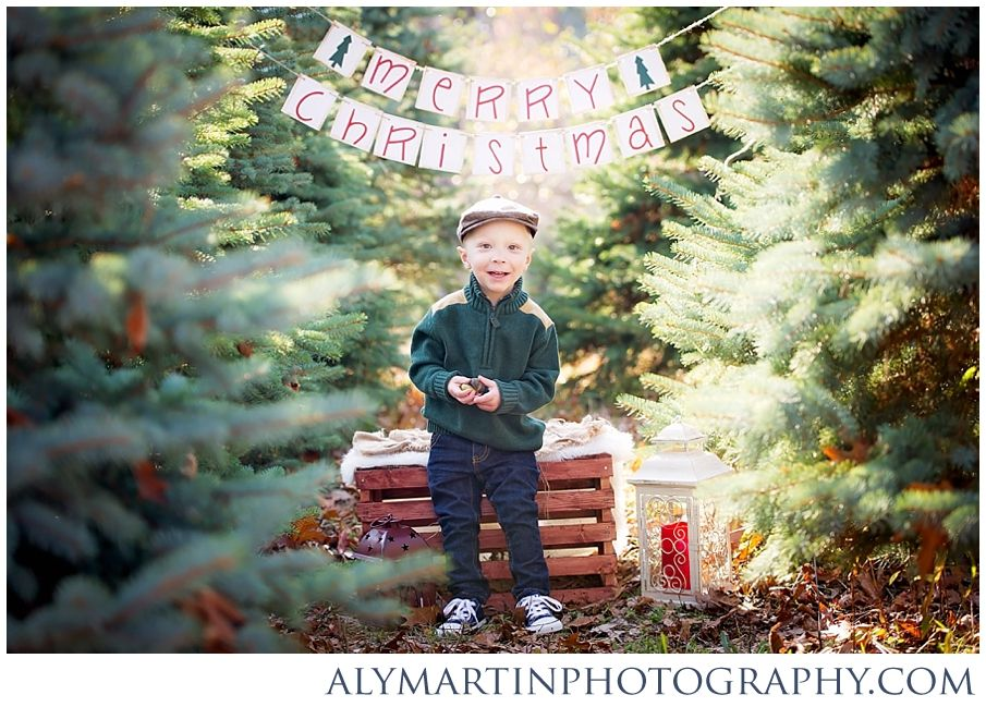 Christmas Mini Sessions 2014 Nepa Family And Children Photographer Christmas Photoshoot Christmas Tree Farm Pictures Photo Backdrop Christmas