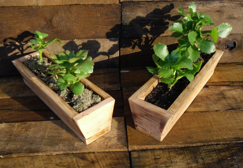 Mini Window Ledge Succulent Planter Or Herb Garden.. $9.98, via Etsy ...