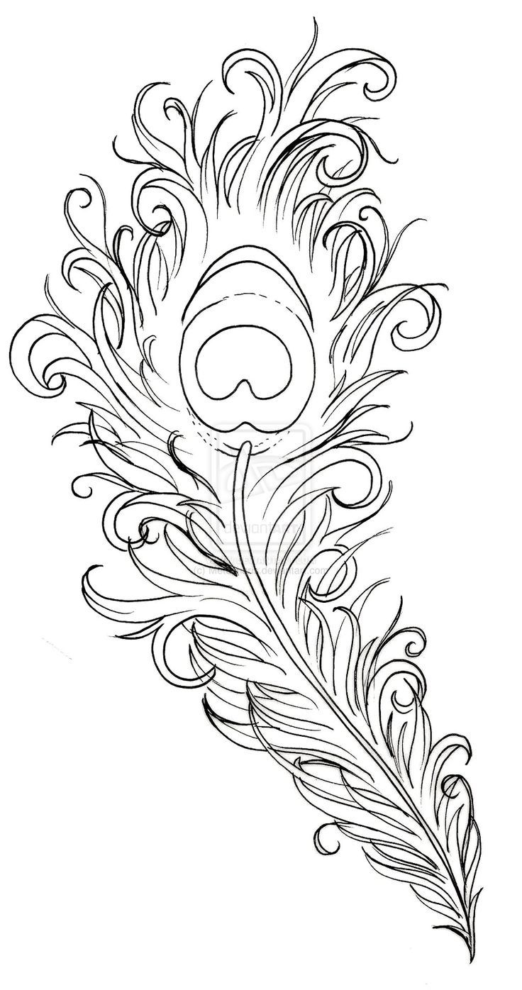 40 Coole Fuß Tattoo Vorlagen Feather drawing Peacock