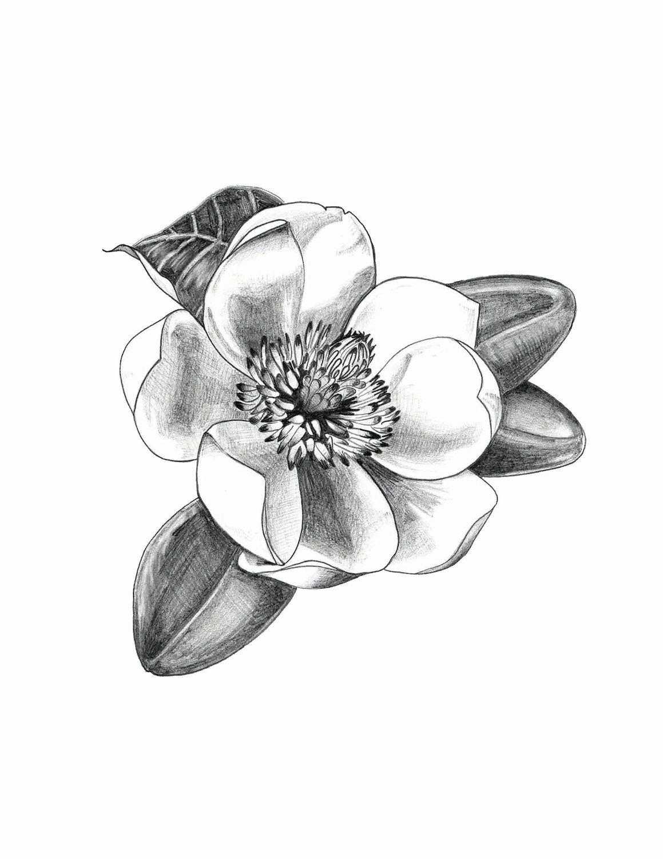 magnolia flower tattoo men - photo #34