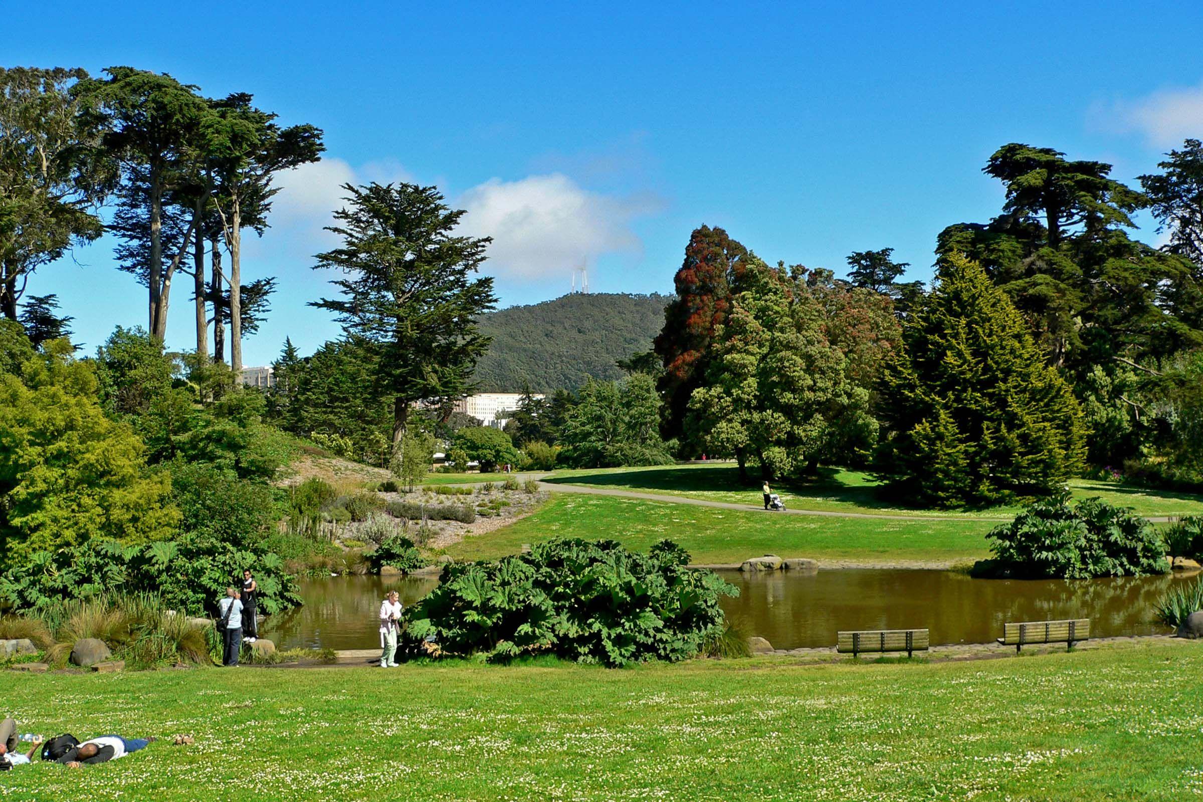 Ordinaire Golden Gate · SF Botanical Garden