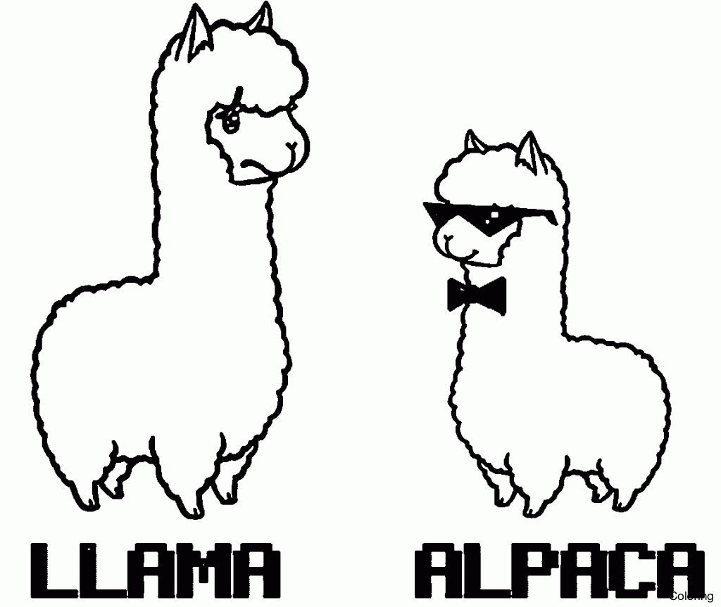 Popular Llama Coloring Pages Knowledgeable Alpaca Page 3f Free Funny In Animal Coloring Pages Alpaca Stuffed Animal Cute Alpaca