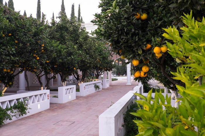 Entre lagune et oliveraies, cette vaste maison de campagne est le havre idéal pour embrasser l'été portugais. Les jardins de la Villa Monte Farm House au Portugal.