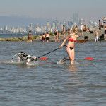 Bow-wow! Beautiful dog beaches in Vancouver