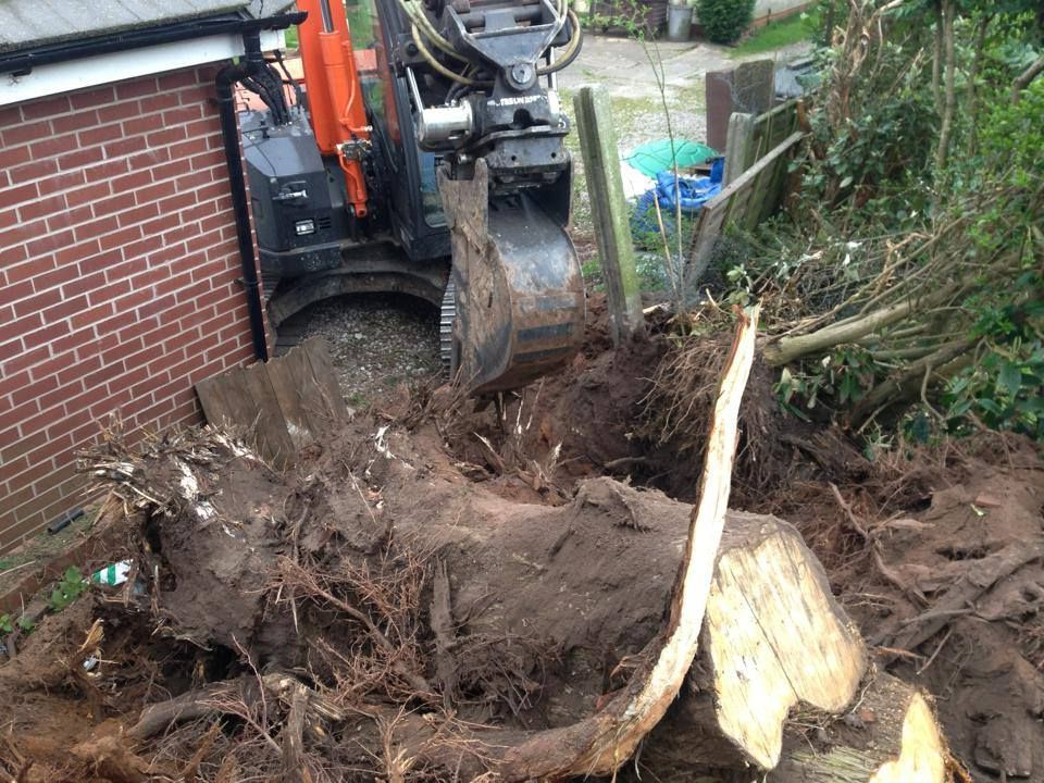 Removal of tree roots and stump and other debris from