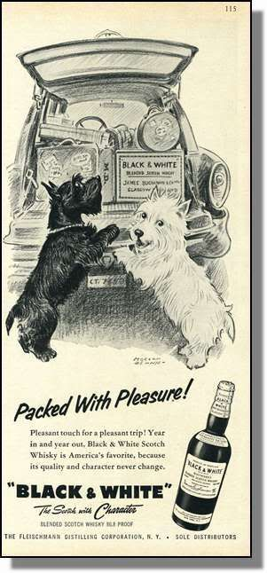 Black White Packed With Pleasure Scottie Dog Black And White Whisky