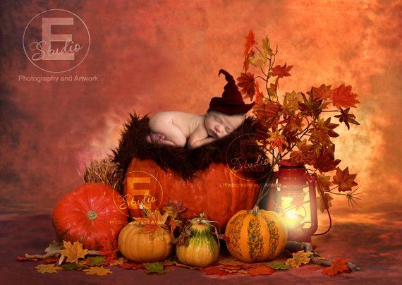 Autumn Digital backdrops, newborn digital prop, 2 photography backgrounds, fall props, baby in pumpkin backdrop, harvest toddler overlay