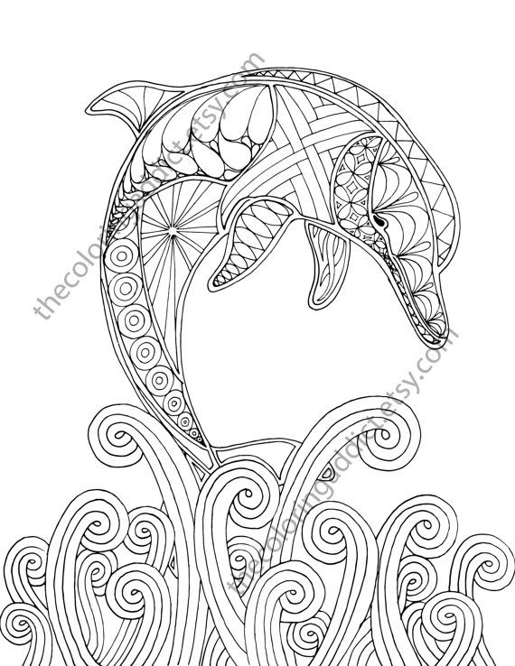 dolphin coloring page, adult coloring sheet, nautical