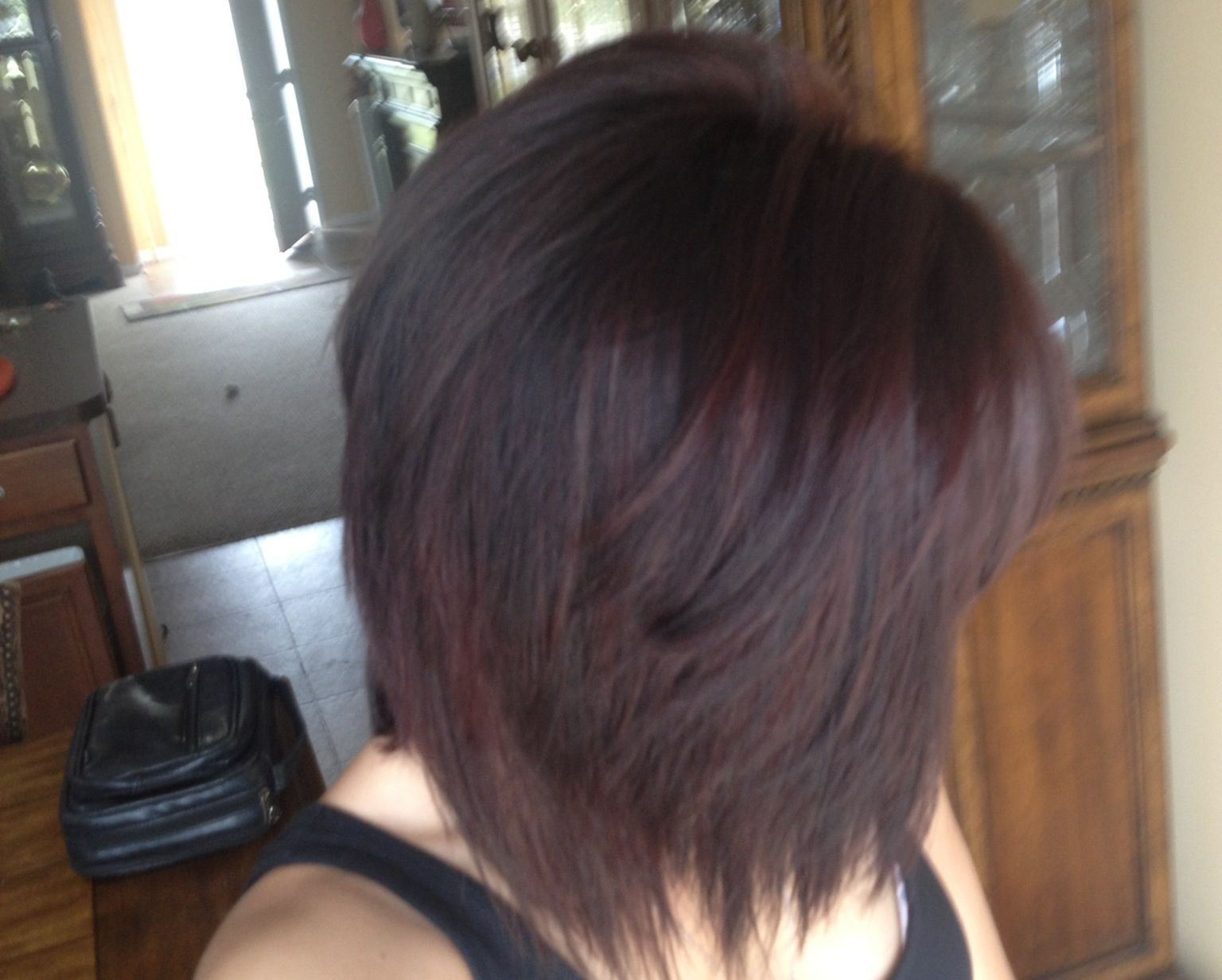 Red Violet Highlights With Medium Level 5 Brown Base My New Color I