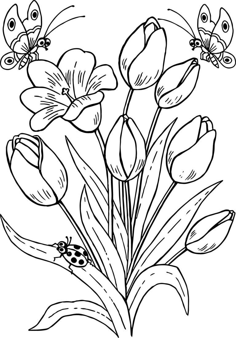 Drawing Butterfly Flowers Tulips Coloring Page Printable Flower Coloring Pages Flower Coloring Pages Butterfly Coloring Page