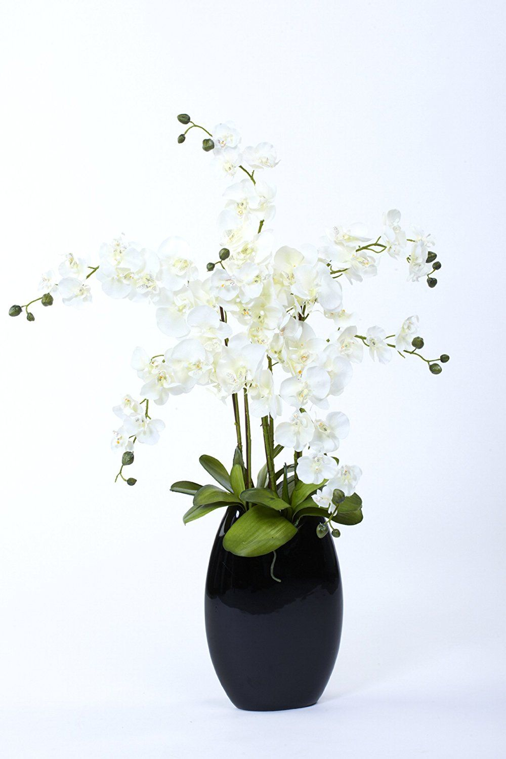 Artificial White Orchid Set In A Black Vase A Modern Silk Flower