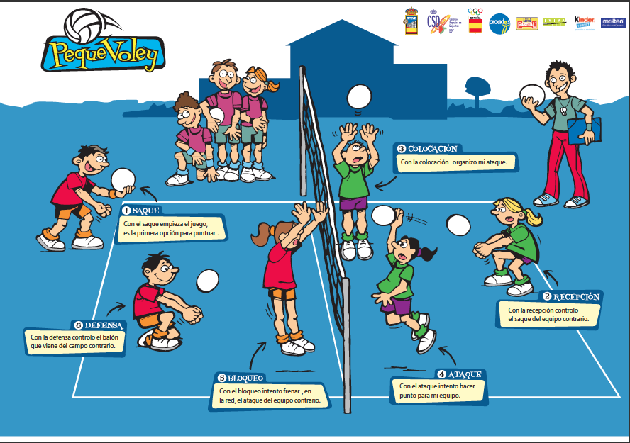 Resumen Del Voleibol Infografias Ejercicios De Voleibol Circuito Educacion Fisica Sistema De Juego