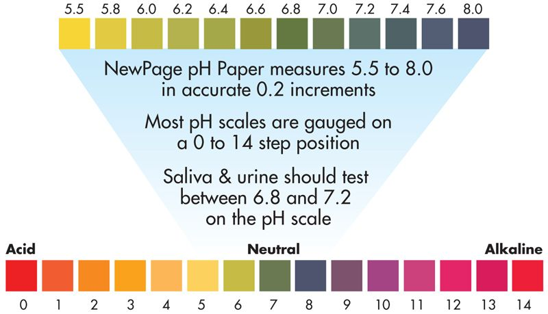 Urine Ph Scale Chart  Google Search  Health    Ph