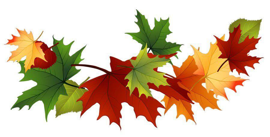 Jesień: dekoracje - liście 1 Dzień Drzewa Dzień Lasu Jesień Ozdoby Święta i pory roku Wrzesień | Fall clip art, Leaf clipart, Leaf collage