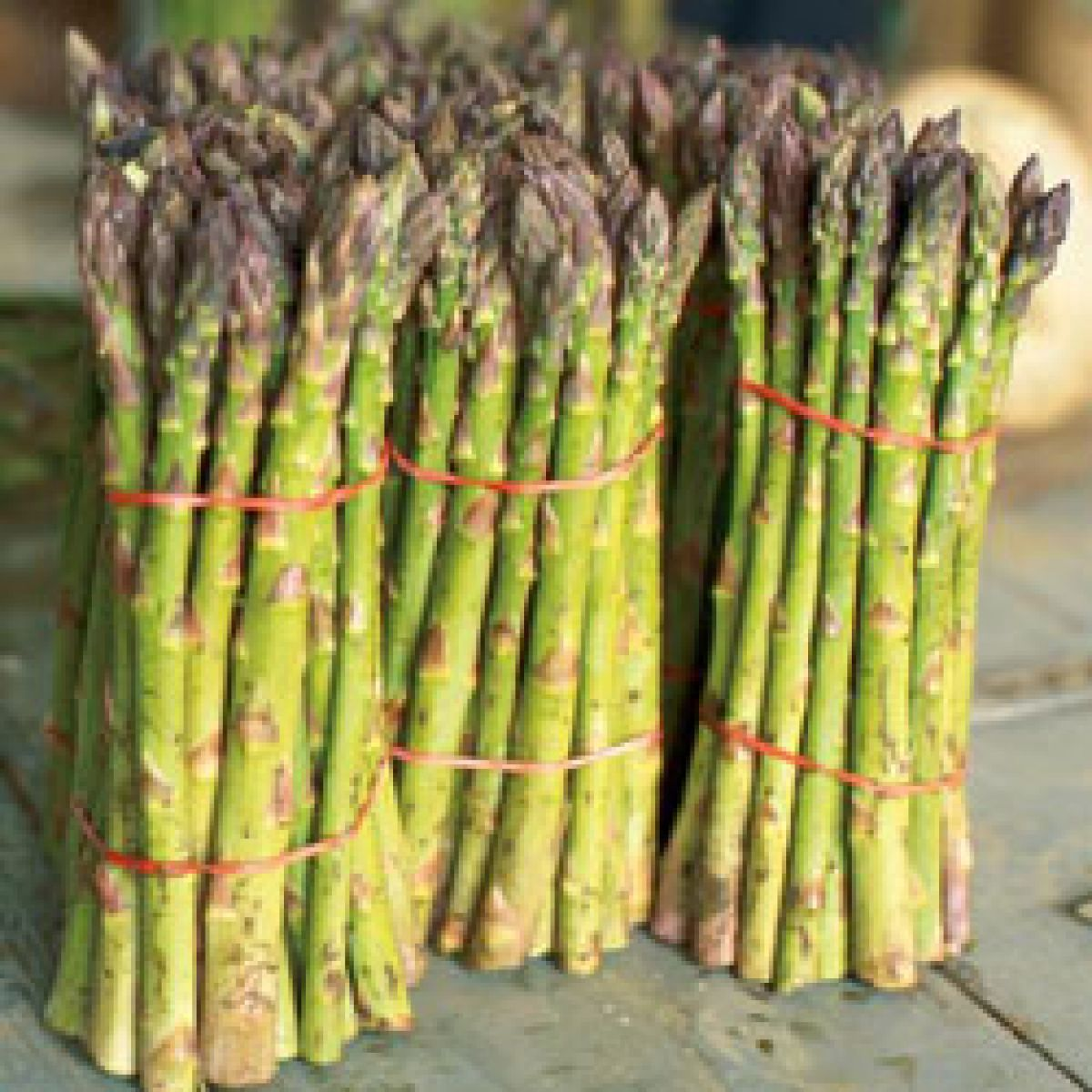 Best Place To Plant Asparagus: VIDEO: How To Ribbon Asparagus
