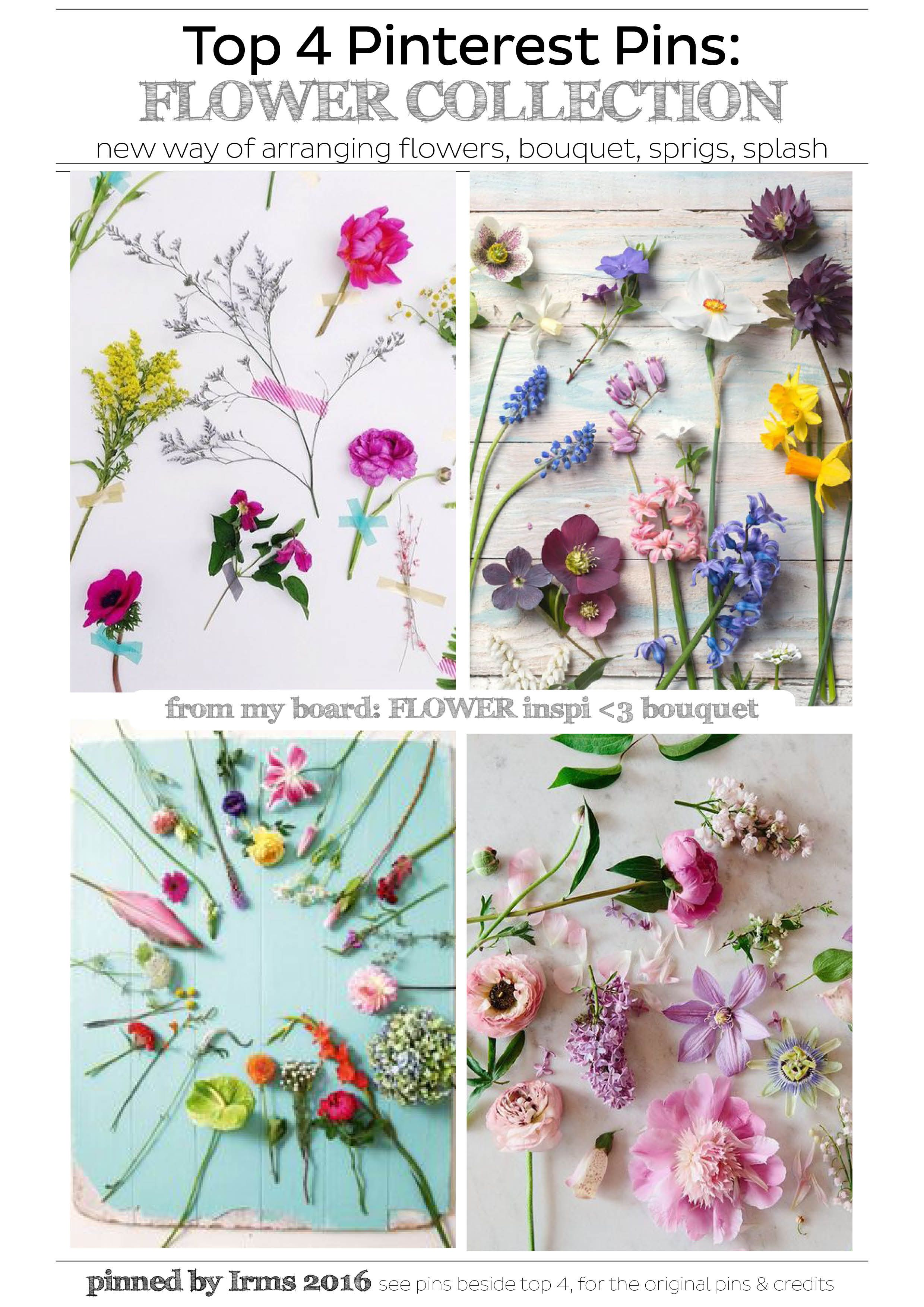 Top 4 pinterest pins flower collection by irms a new way of top 4 pinterest pins flower collection by irms a new way of arranging izmirmasajfo