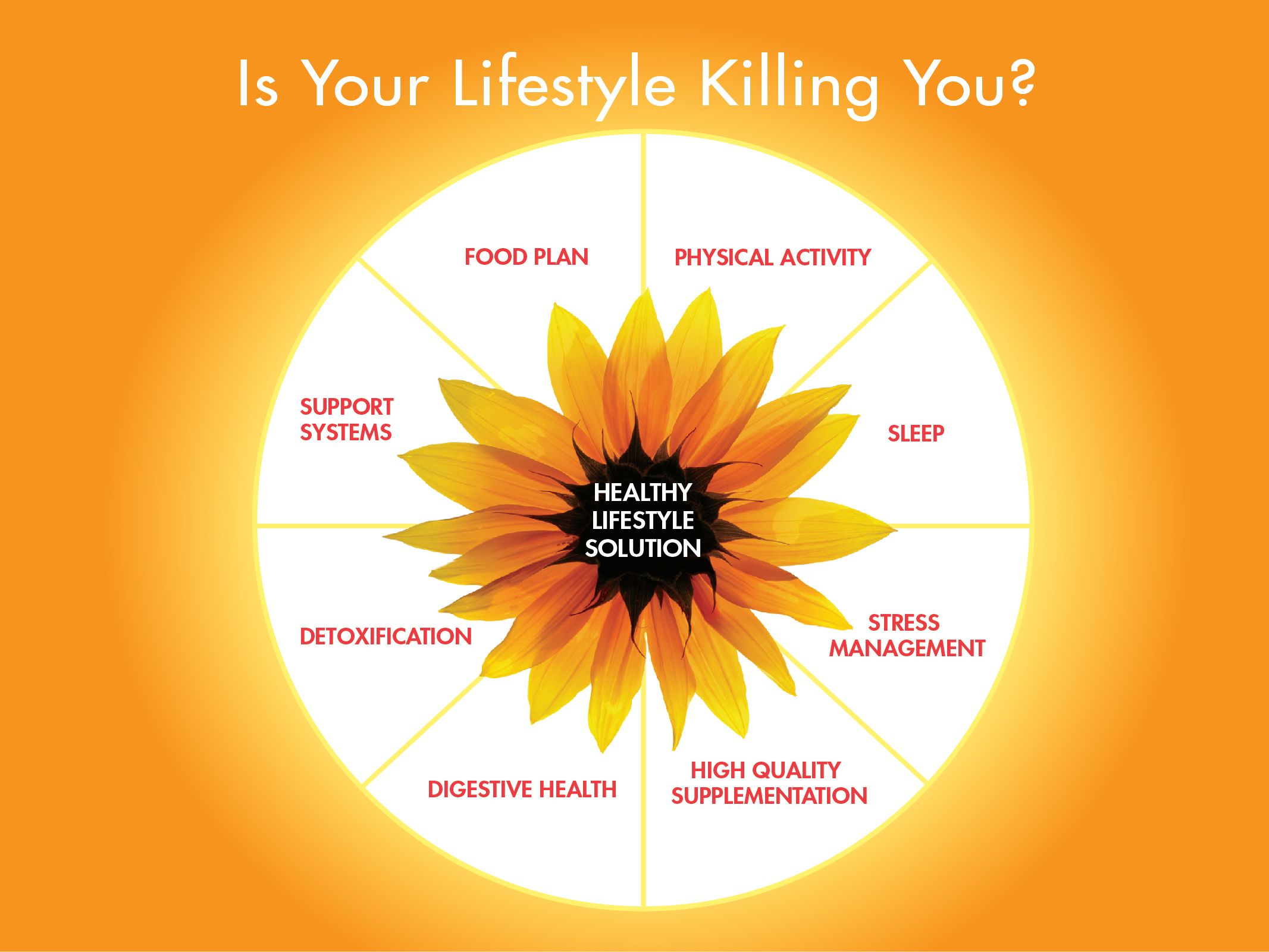 Healthy Lifestyle Solution Wheel Healthy Lifestyle should