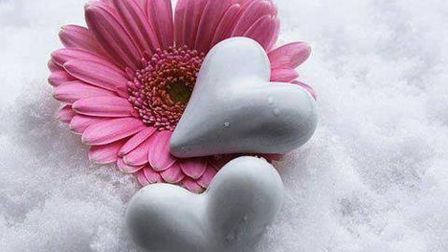 Hearts in Nature - How many hearts can you find?   Winter ...   Hearts In Nature Winter