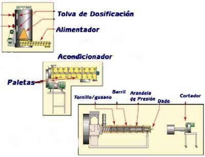 Diseño de plantas de alimentos balanceados especializadas para peces y crustáceos - Engormix