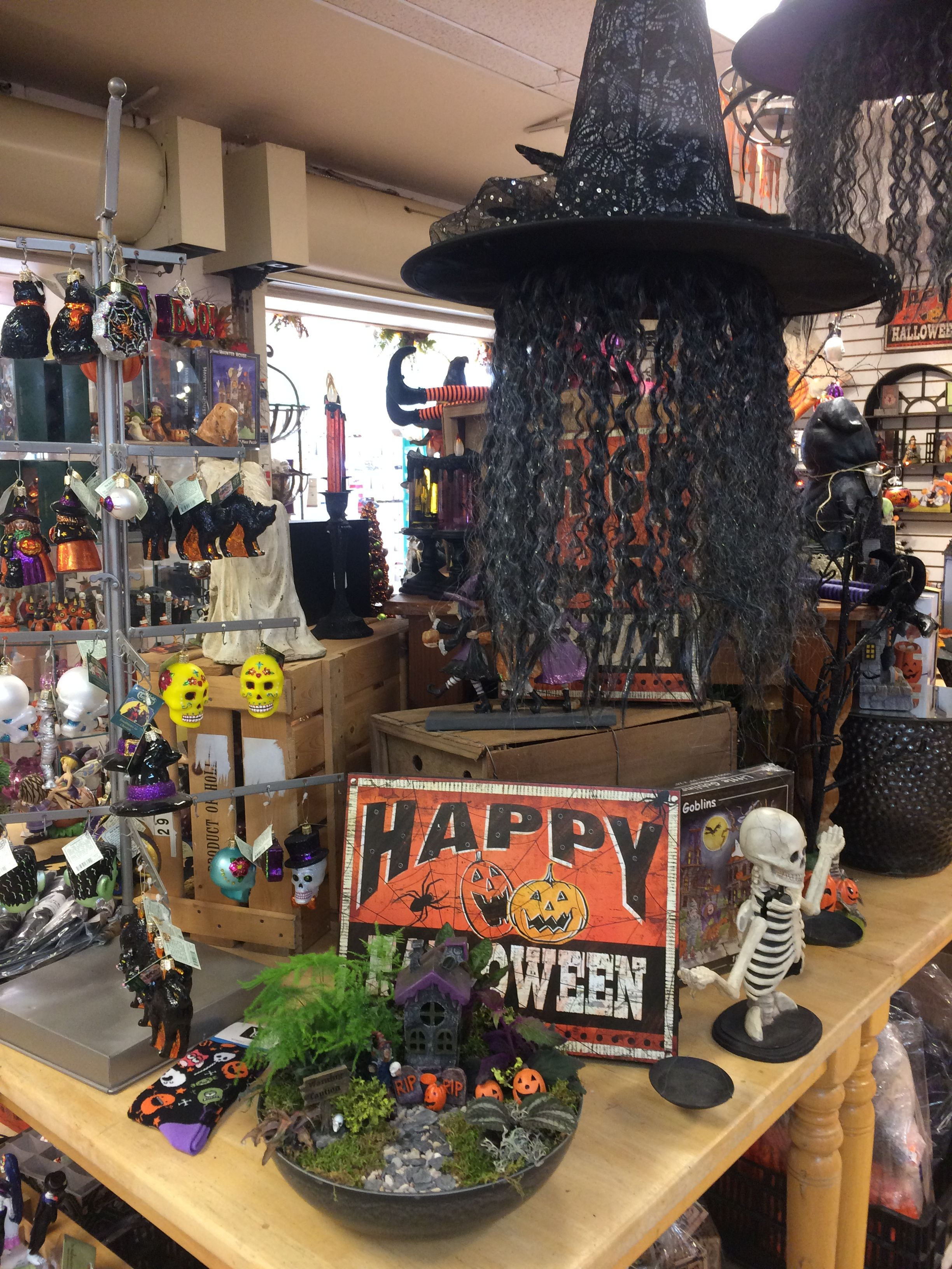 complimentary merchandising example halloween theme succulent