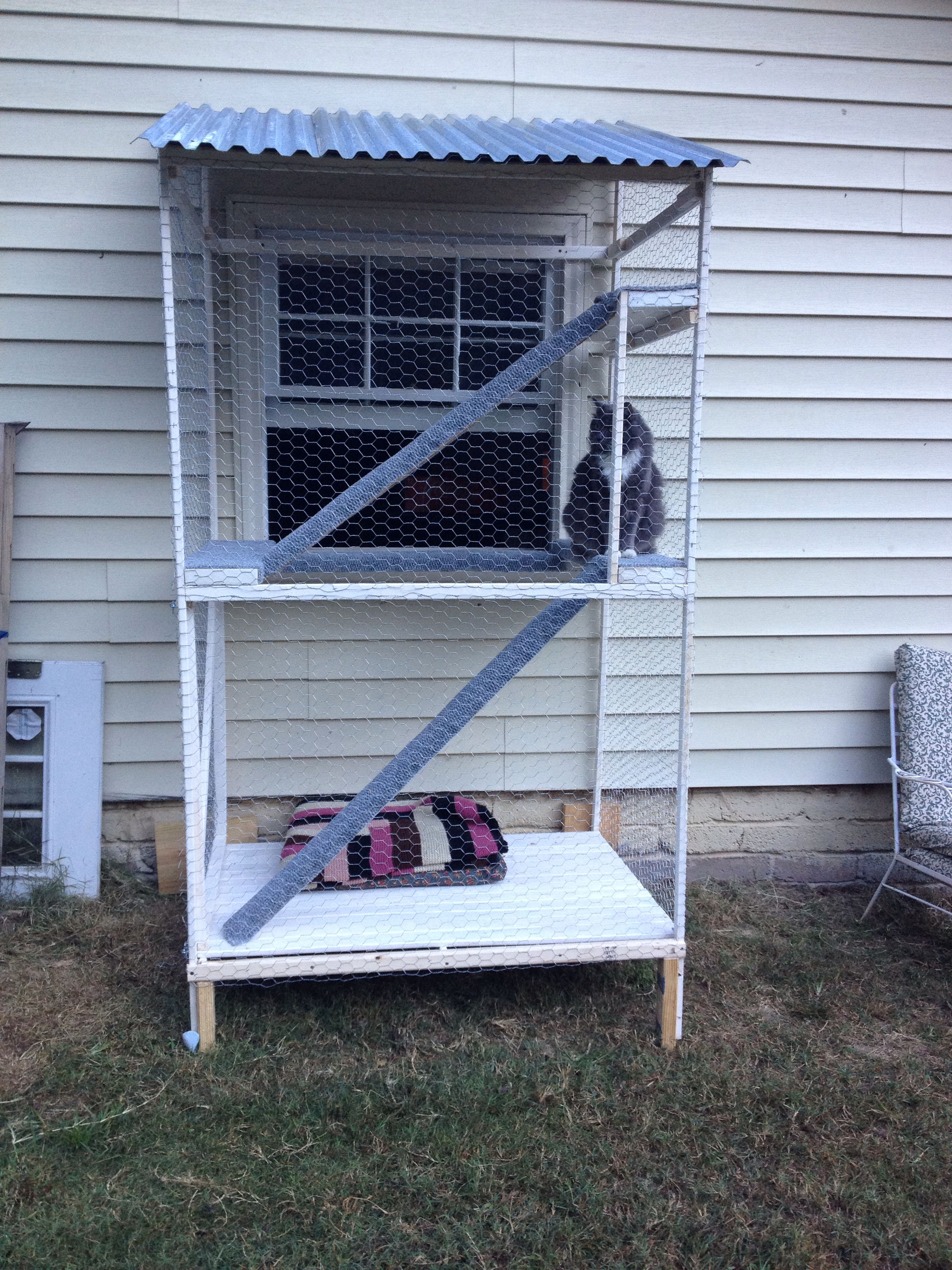 Our Catio A Safe Outdoor Inclosure For Indoor Cats Outdoor Cats Cat Patio Outdoor Cat House