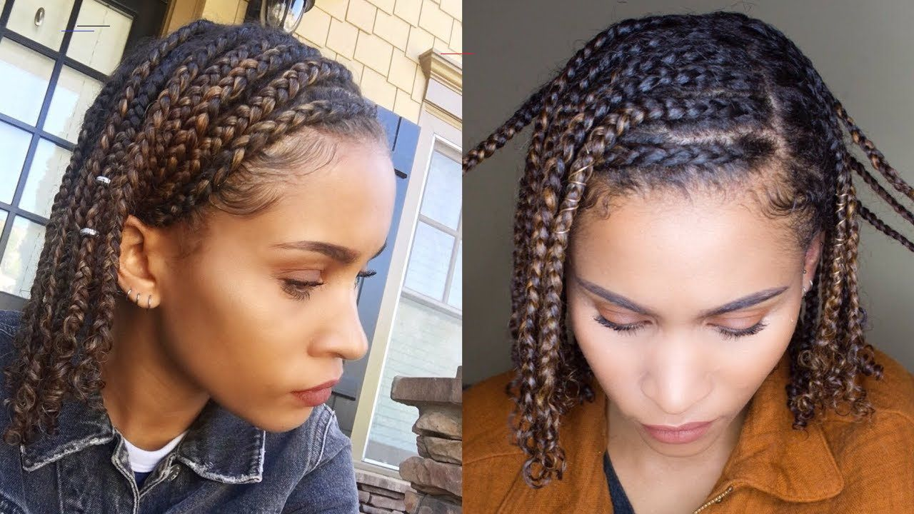 Mini Braids Easy Protective Style For Natural Hair Protectivestyles In 2020 Balayage Haar