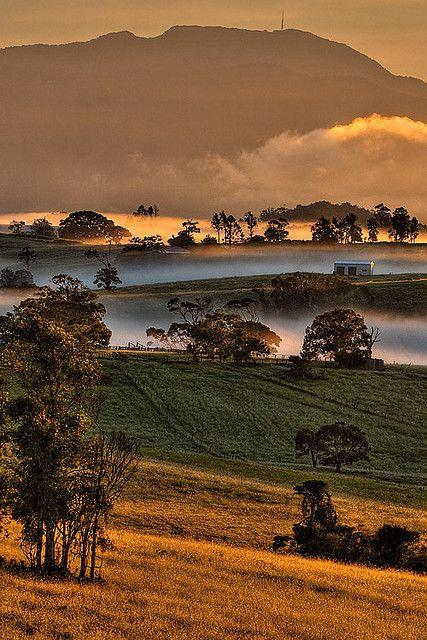✿ڿڰۣ(̆̃̃•Aussiegirl. Mount Bellenden Kerr - Queensland, Australia.  Photo: Alan Carmichael.