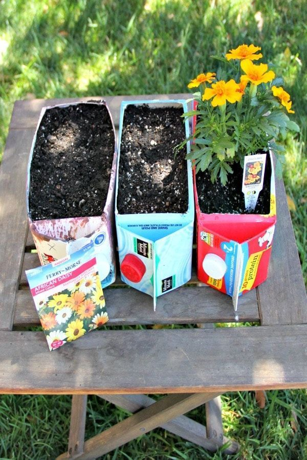Fun flower garden for children with upcycled cartons - Elaine