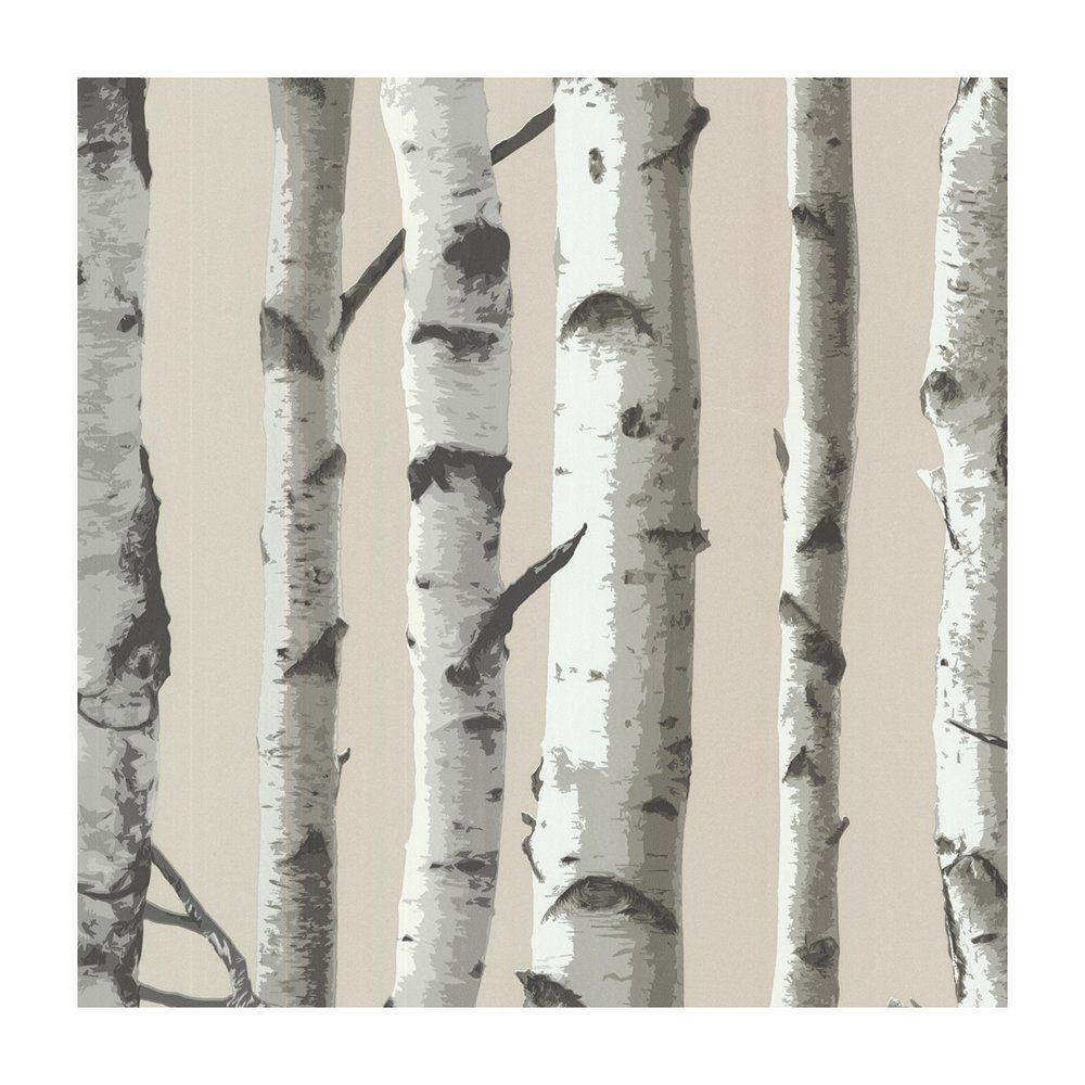 Provincial Wallcoverings 2532 20418 Irvin Grey Birch Tree Wallpaper Birch Tree Wallpaper Birches Wallpaper Tree Wallpaper