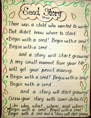What's Your Seed Story? / Focusing on
