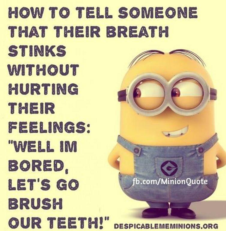 Monday Minions Funny quotes (01:00:13 PM, Monday 02, November 2015 PST) – 10 pics