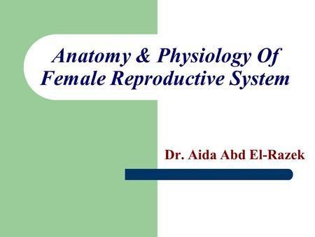 Anatomy & Physiology Of Female Reproductive System Dr. Aida Abd El ...