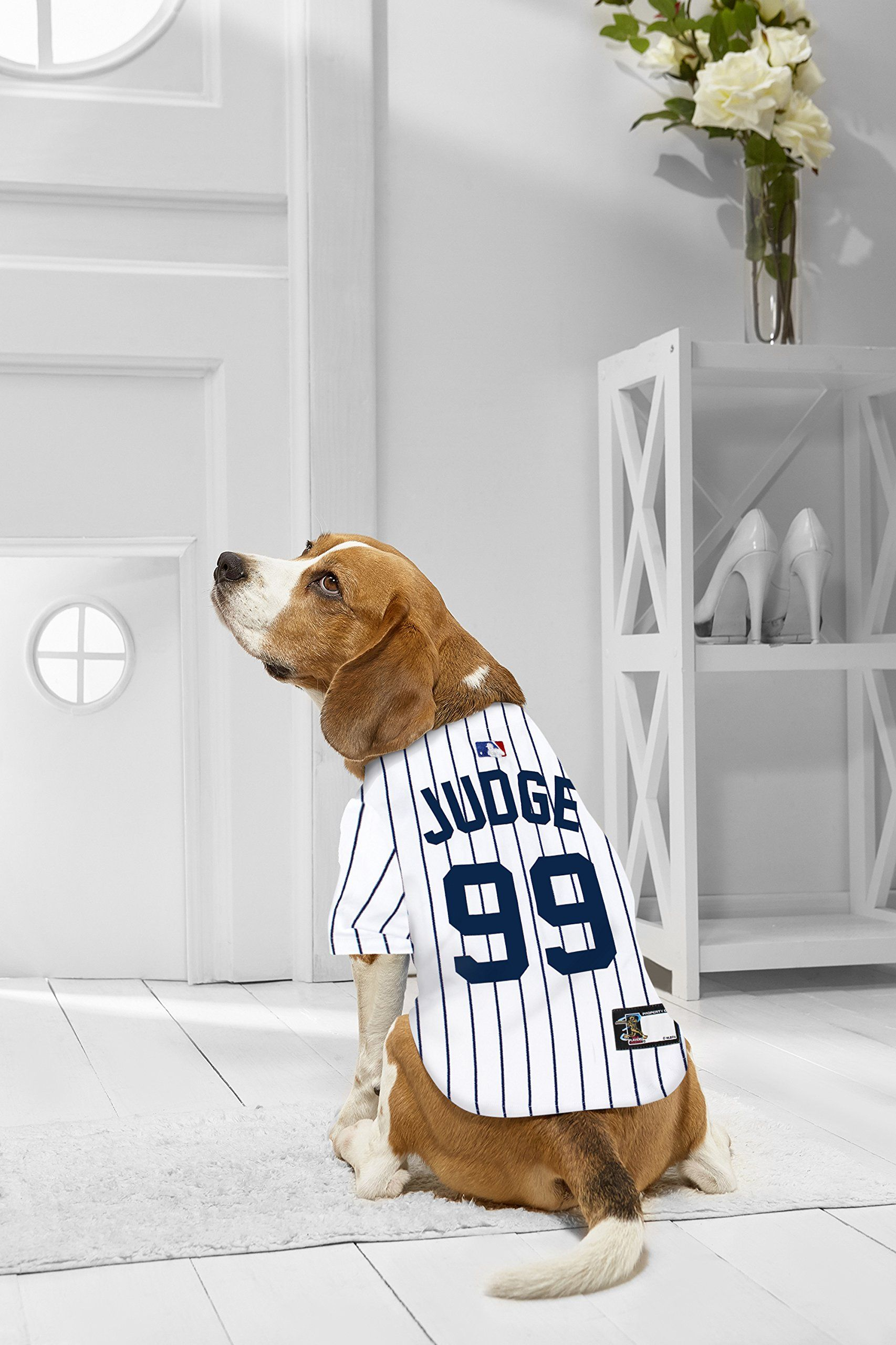 best cheap 9008b d842b MLBPA DOG JERSEY AARON JUDGE -99 Pet Jersey MLB New York ...