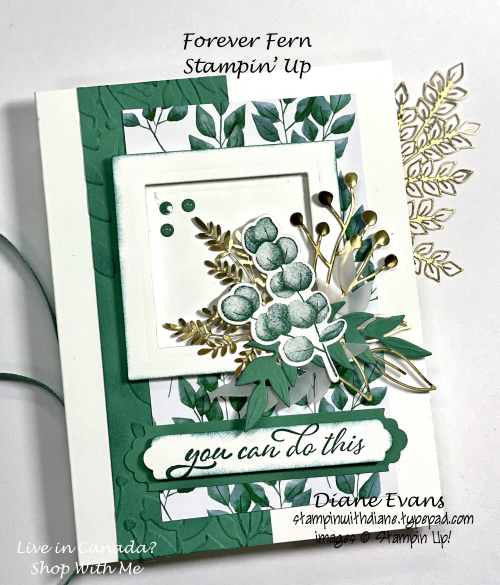 Stampin With Diane Forever Fern SU