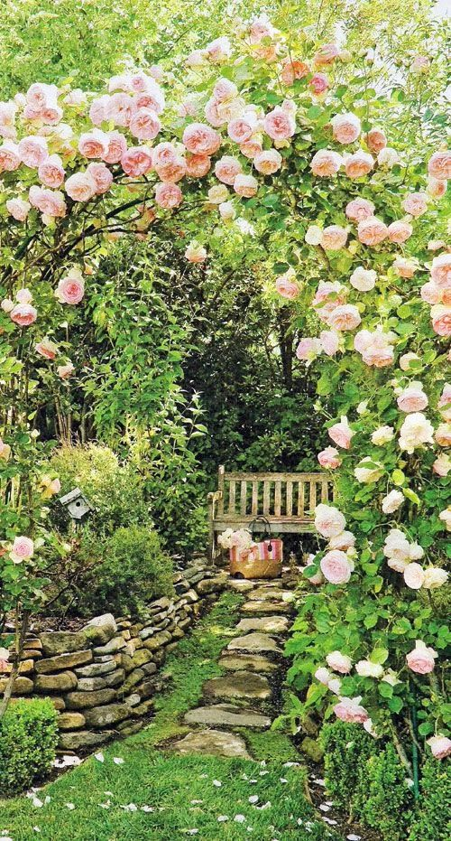 Secret Garden: Beautiful Garden Relaxation Place..this Really Does Look