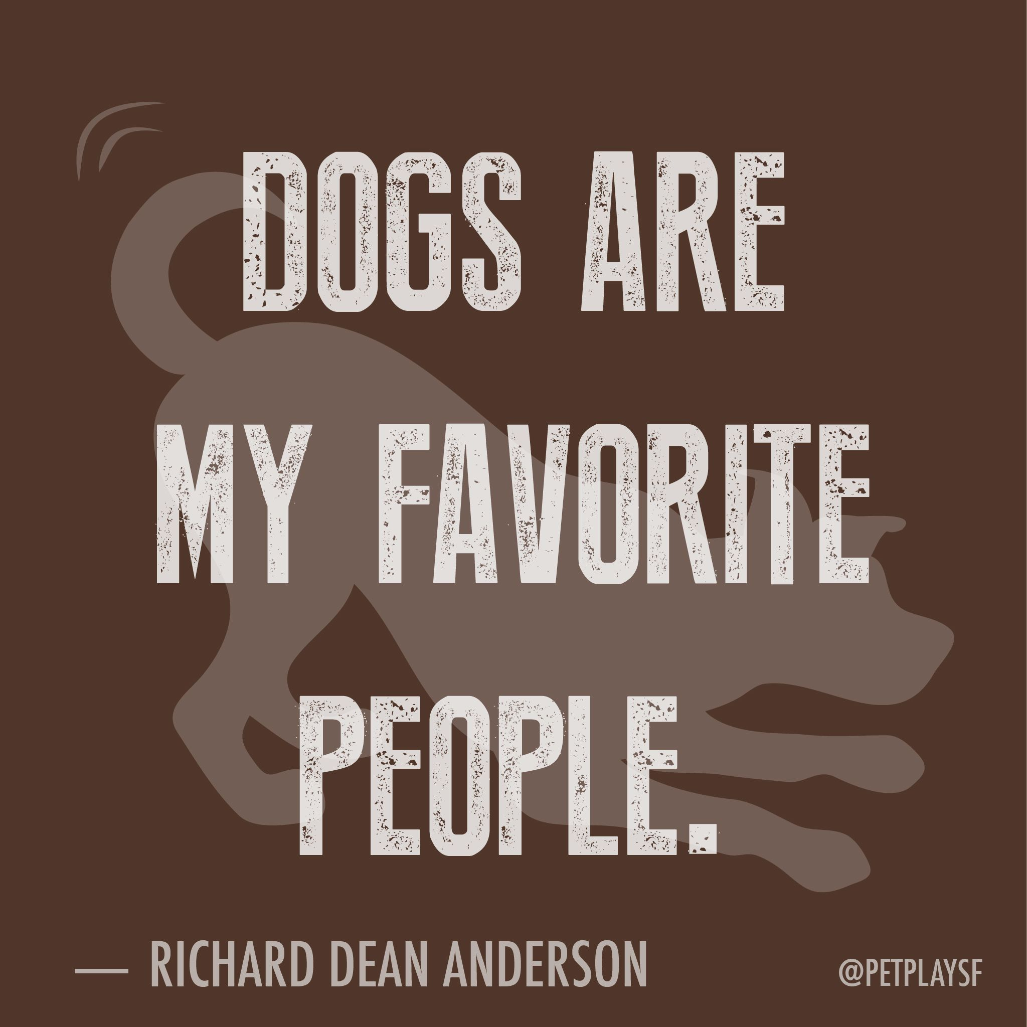 Dogs Are My Favorite People Weeklyplayquote Cute Cat Quotes Animal Quotes Loveable Quote